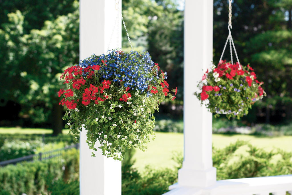 How to make wooden hanging flower baskets